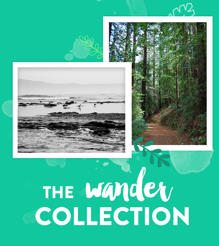 The Wander Collection
